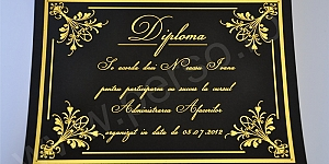 Diploma carton color cu folio